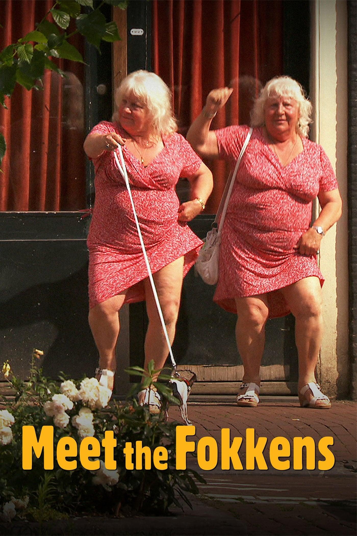 Meet the Fokkens (2011)