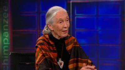 The Daily Show with Trevor Noah Season 17 :Episode 88  Jane Goodall
