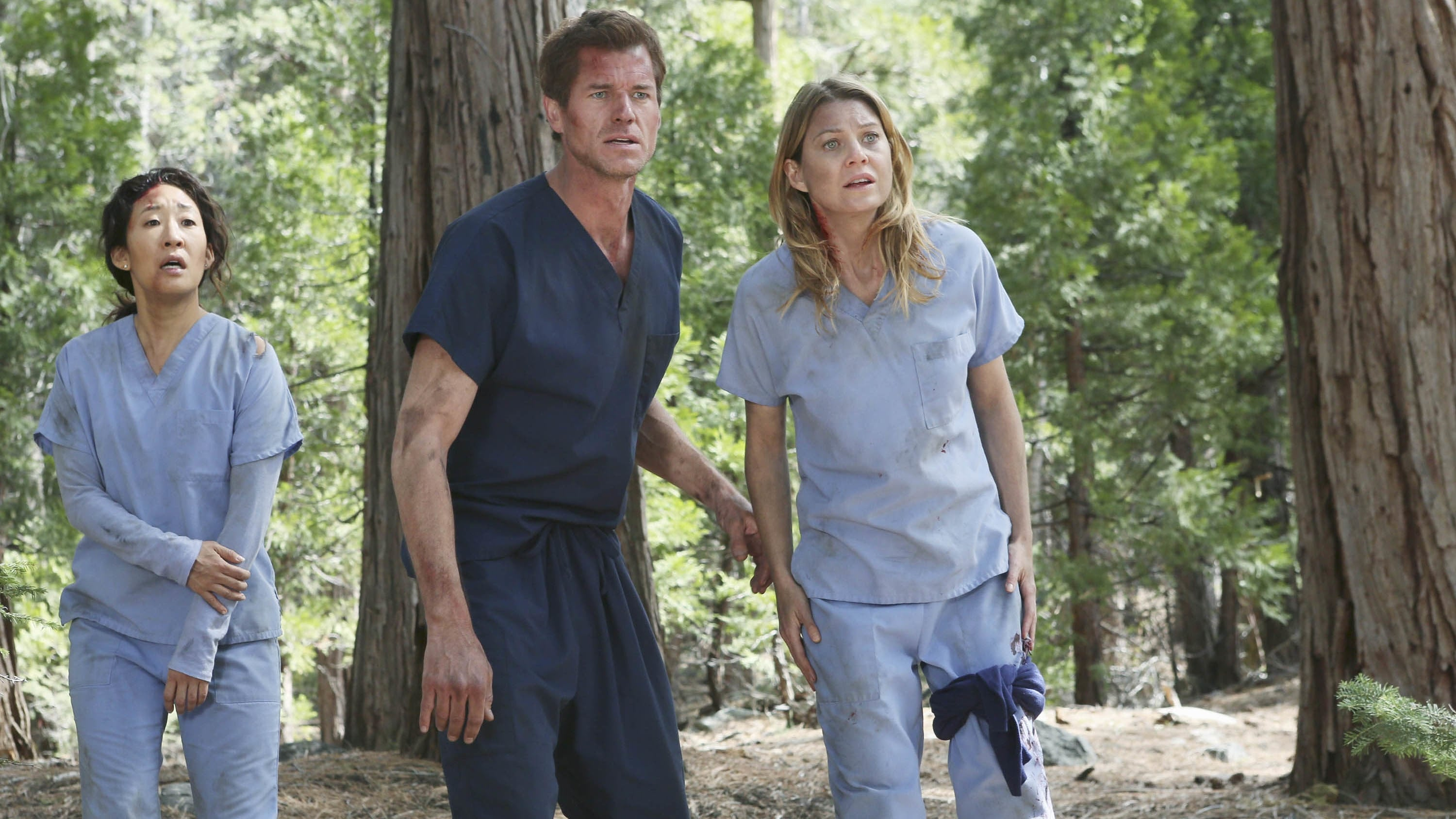 Grey's Anatomy Season 8 :Episode 24  Der Flug