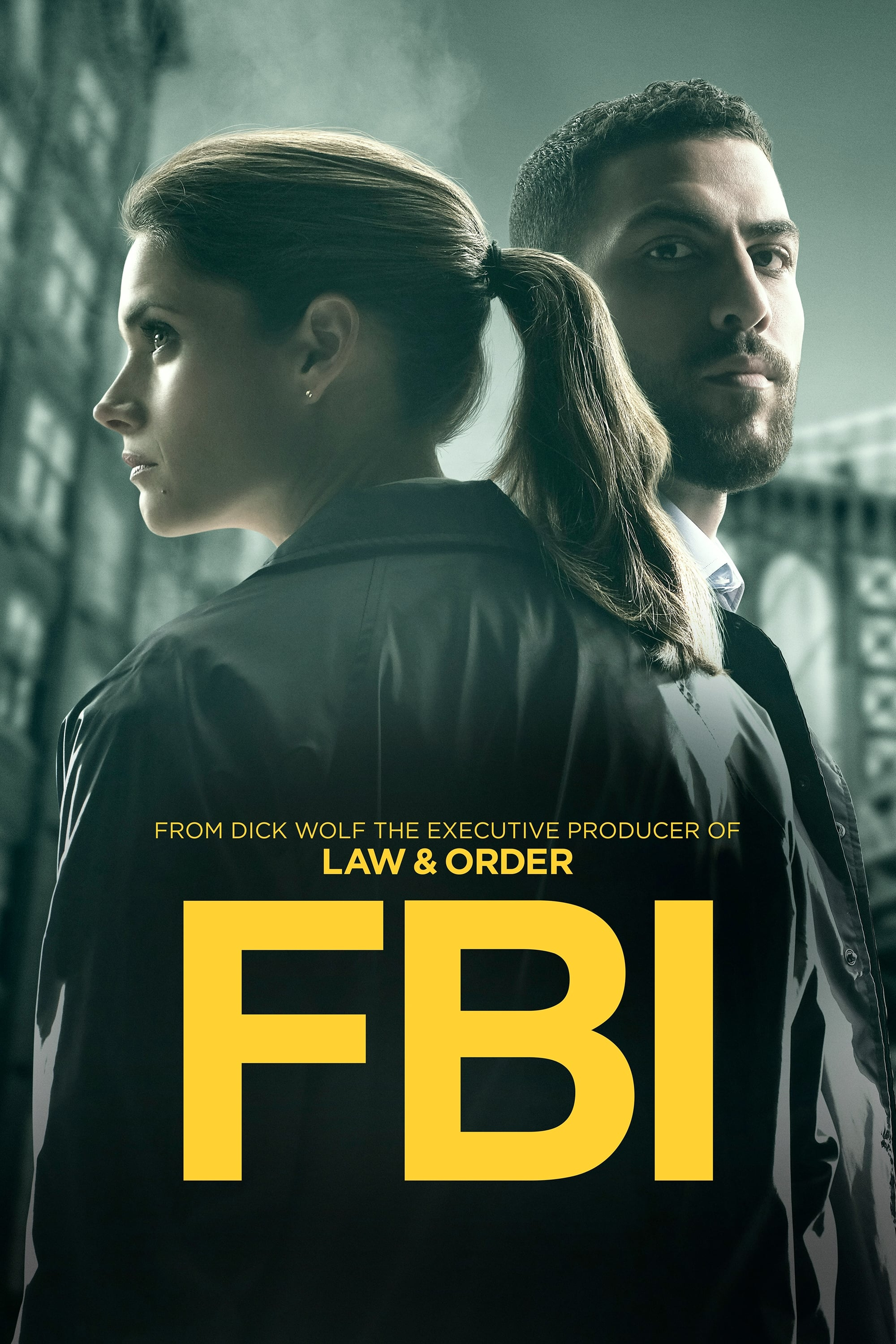 Fbi Serie Staffel 1