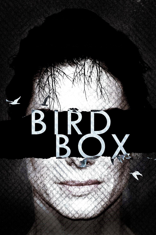 Banner de Bird Box: A Ciegas