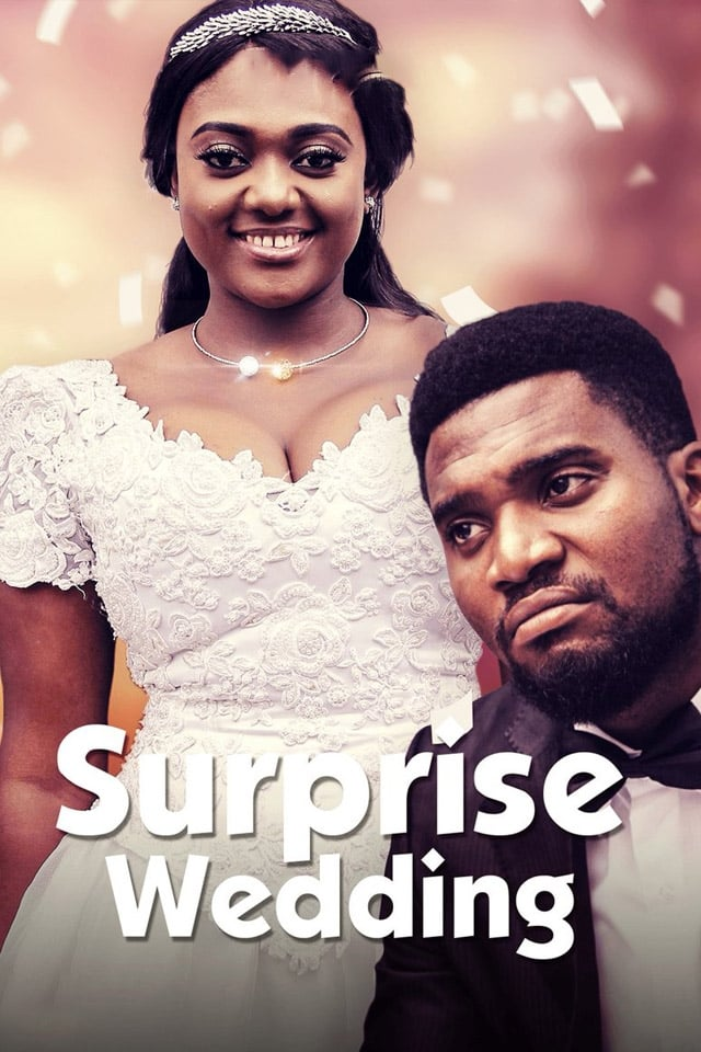 Ver Surprise Wedding Online HD Español ()