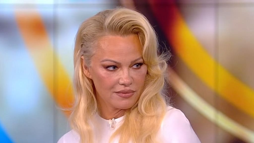 The View Season 23 :Episode 4  Pamela Anderson