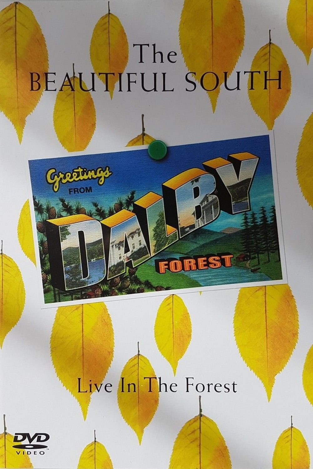 The Beautiful South: Live In The Forest (2006)