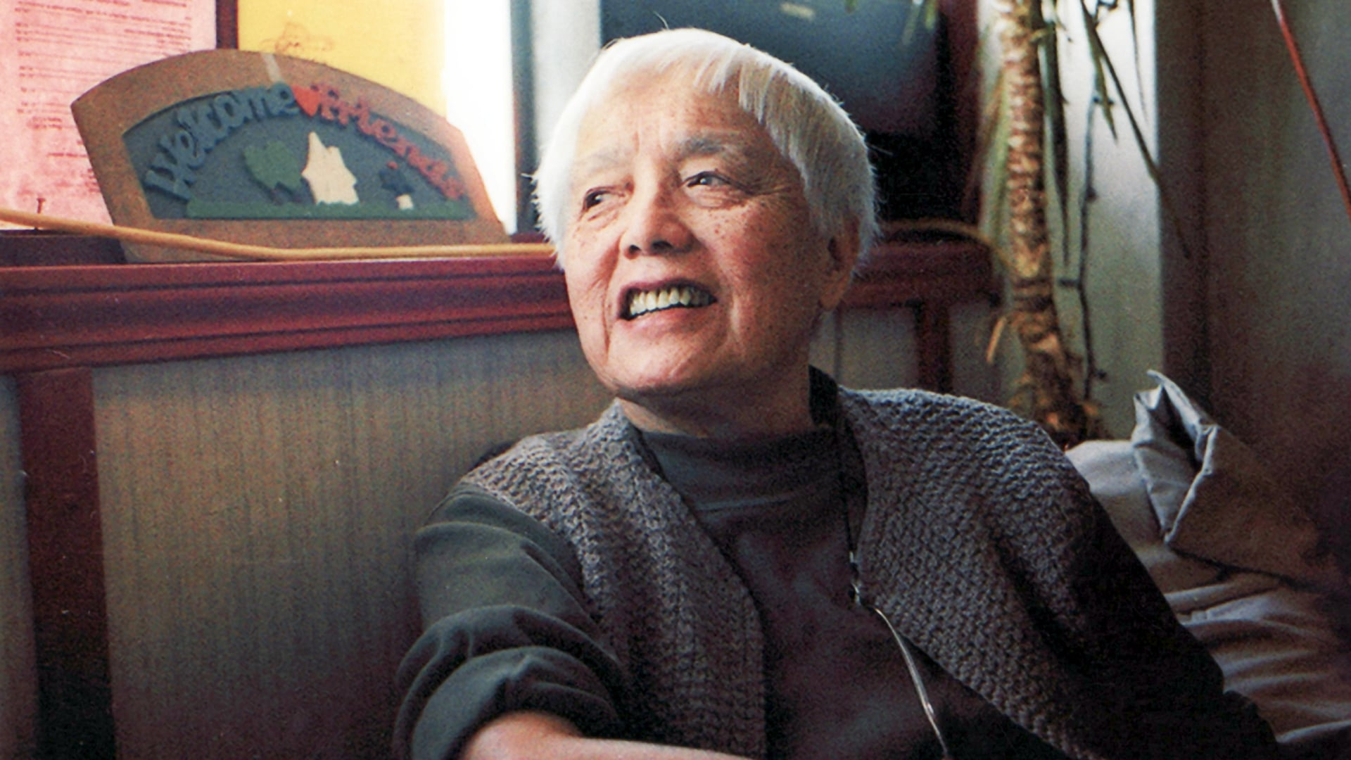 POV Season 27 :Episode 2  American Revolutionary: The Evolution of Grace Lee Boggs