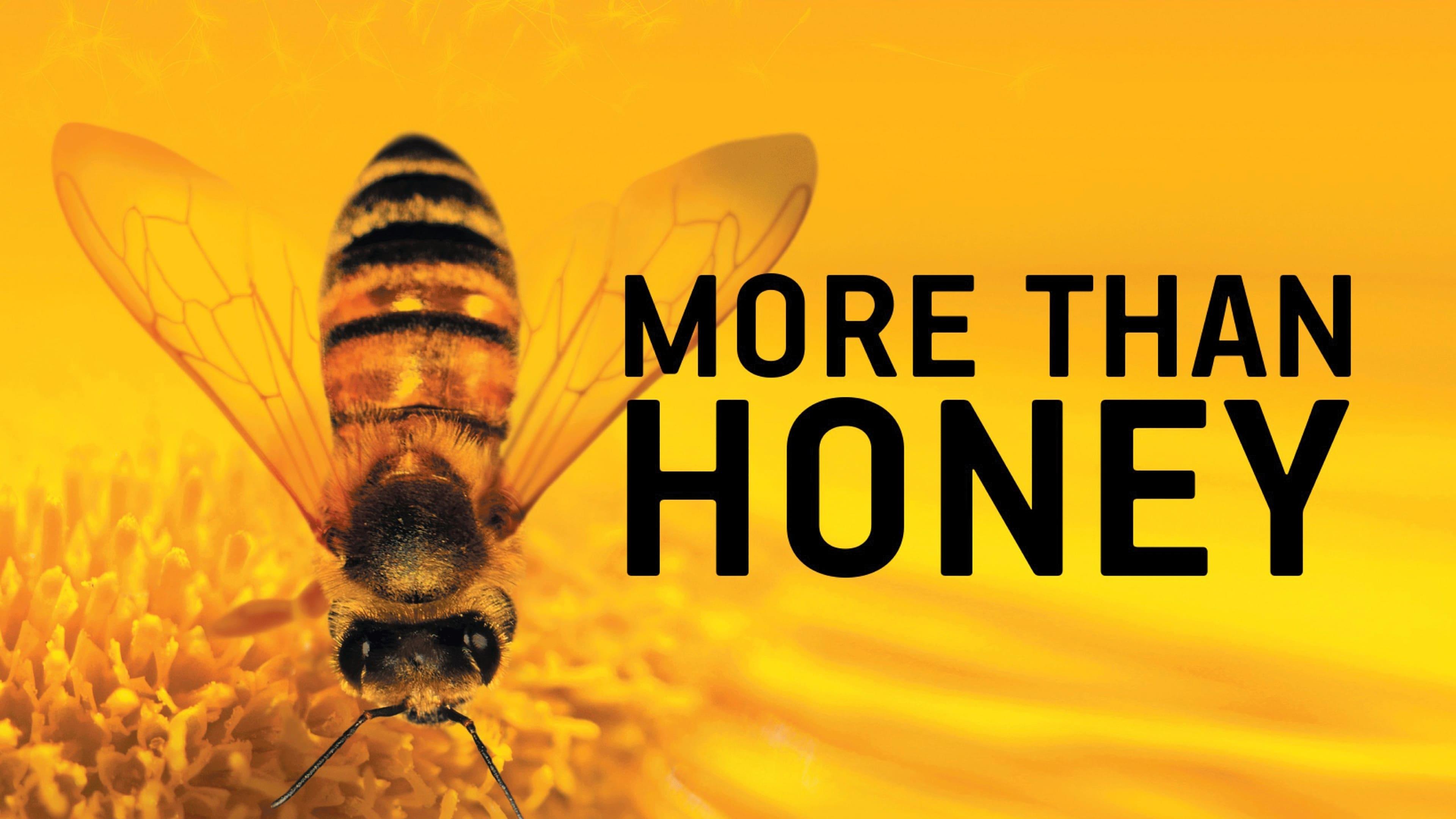 More Than Honey Ganzer Film