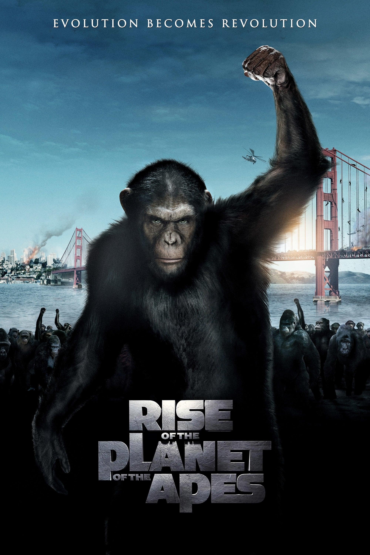 Download Apes Torrents - BT4G