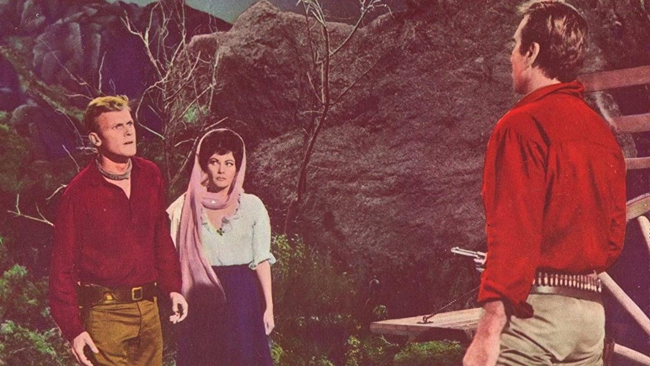 Hostile Guns (1967)