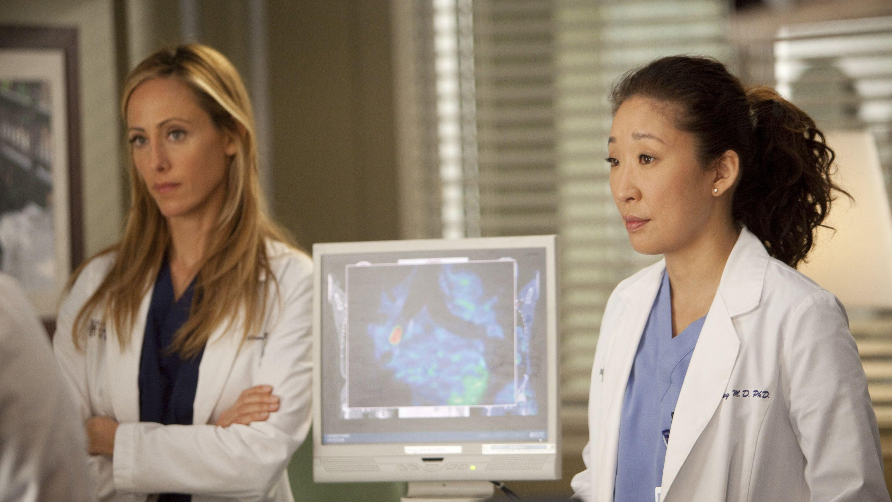 Grey's Anatomy Season 8 :Episode 23  Migration