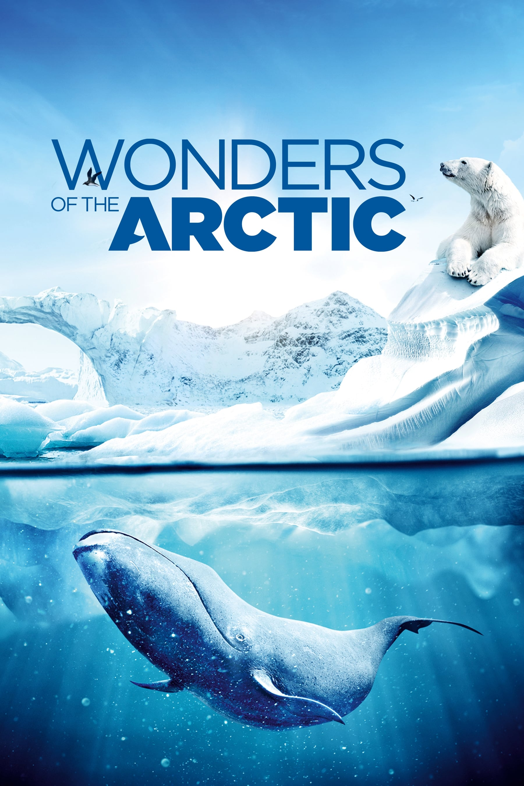 Wonders of the Arctic (2014)
