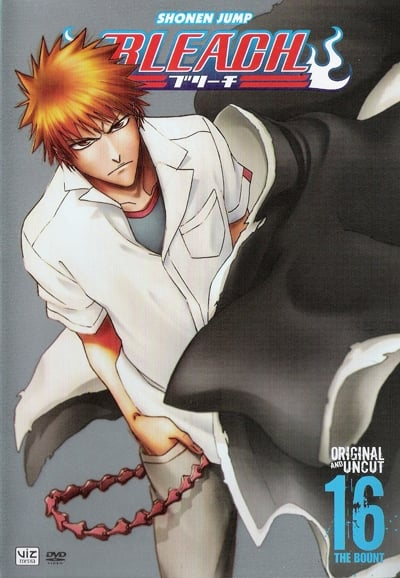 Bleach Season 16