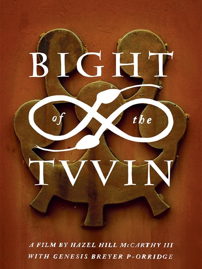 Ver Bight of the Twin Online HD Español ()