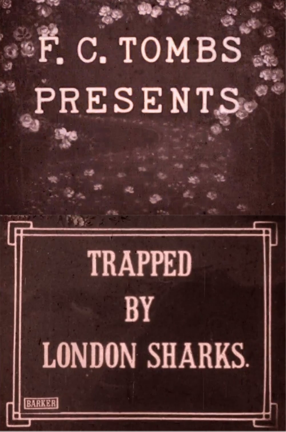 Ver Trapped by London Sharks Online HD Español ()