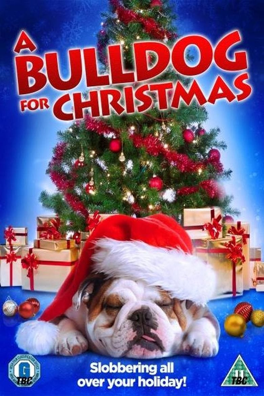A Bulldog for Christmas on FREECABLE TV