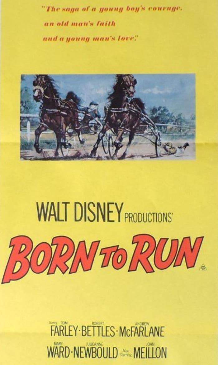 Born to Run (1979)