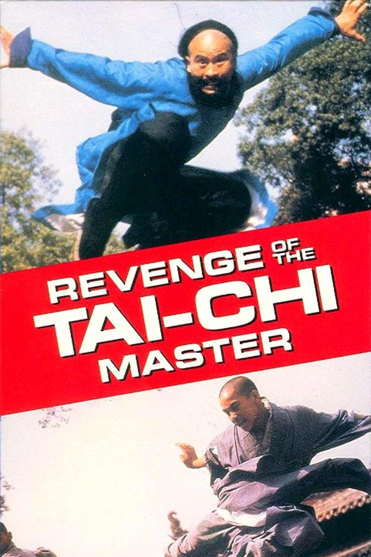 Revenge of the Tai-Chi Master