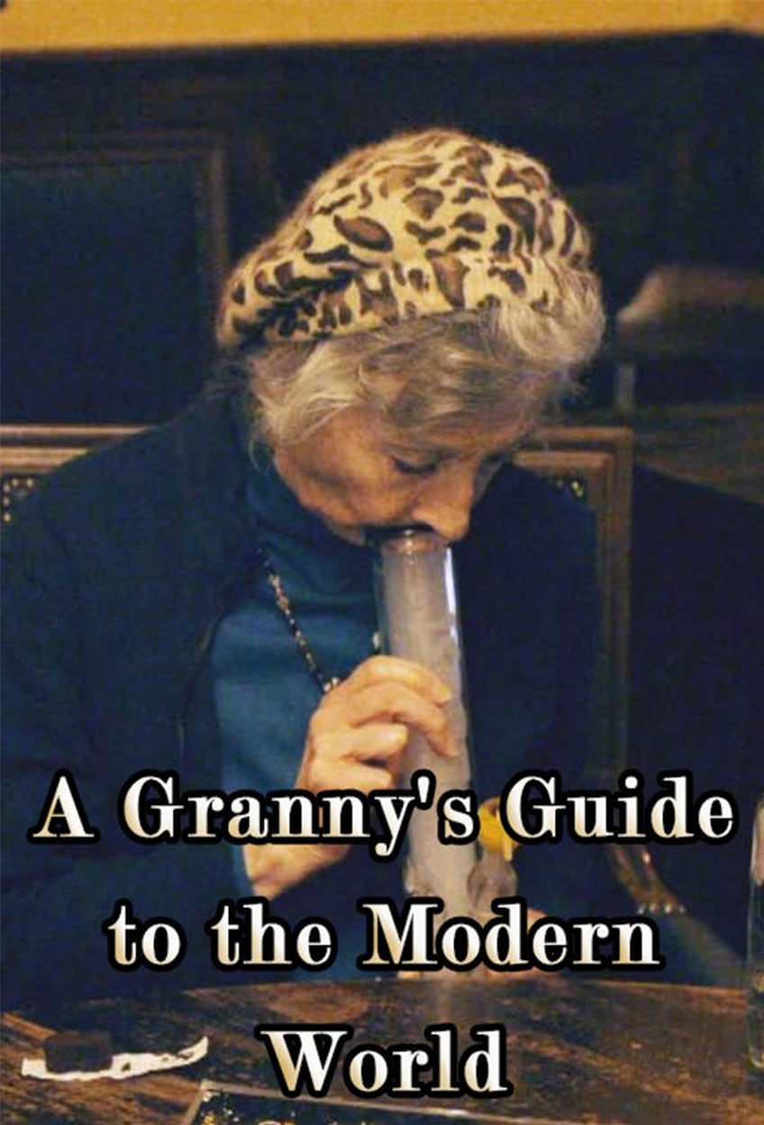A Granny's Guide to the Modern World (2016)