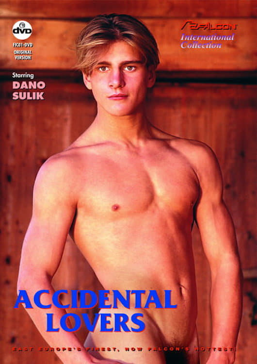 Ver Accidental Lovers Online HD Español (1993)
