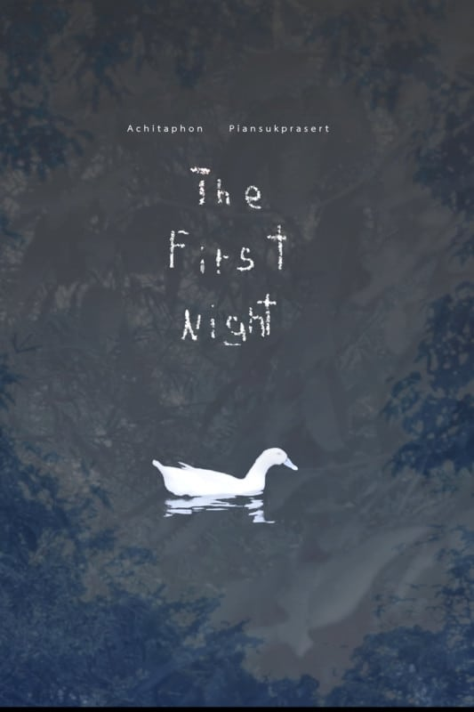 Ver The First Night Online HD Español ()