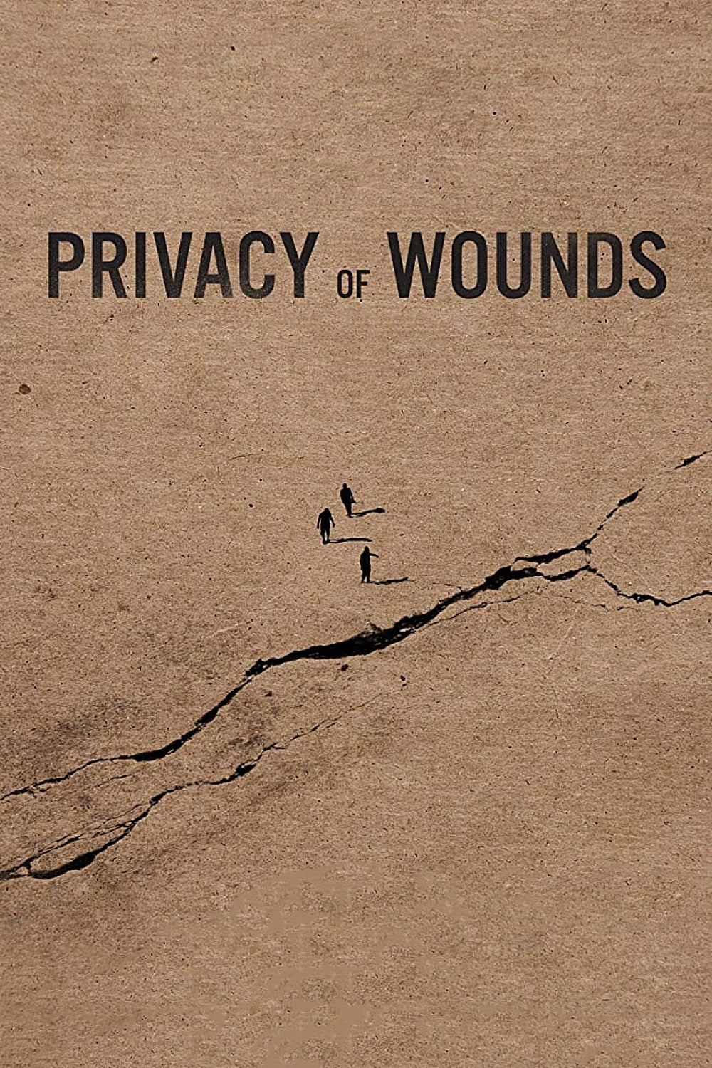 Privacy of Wounds (2018)