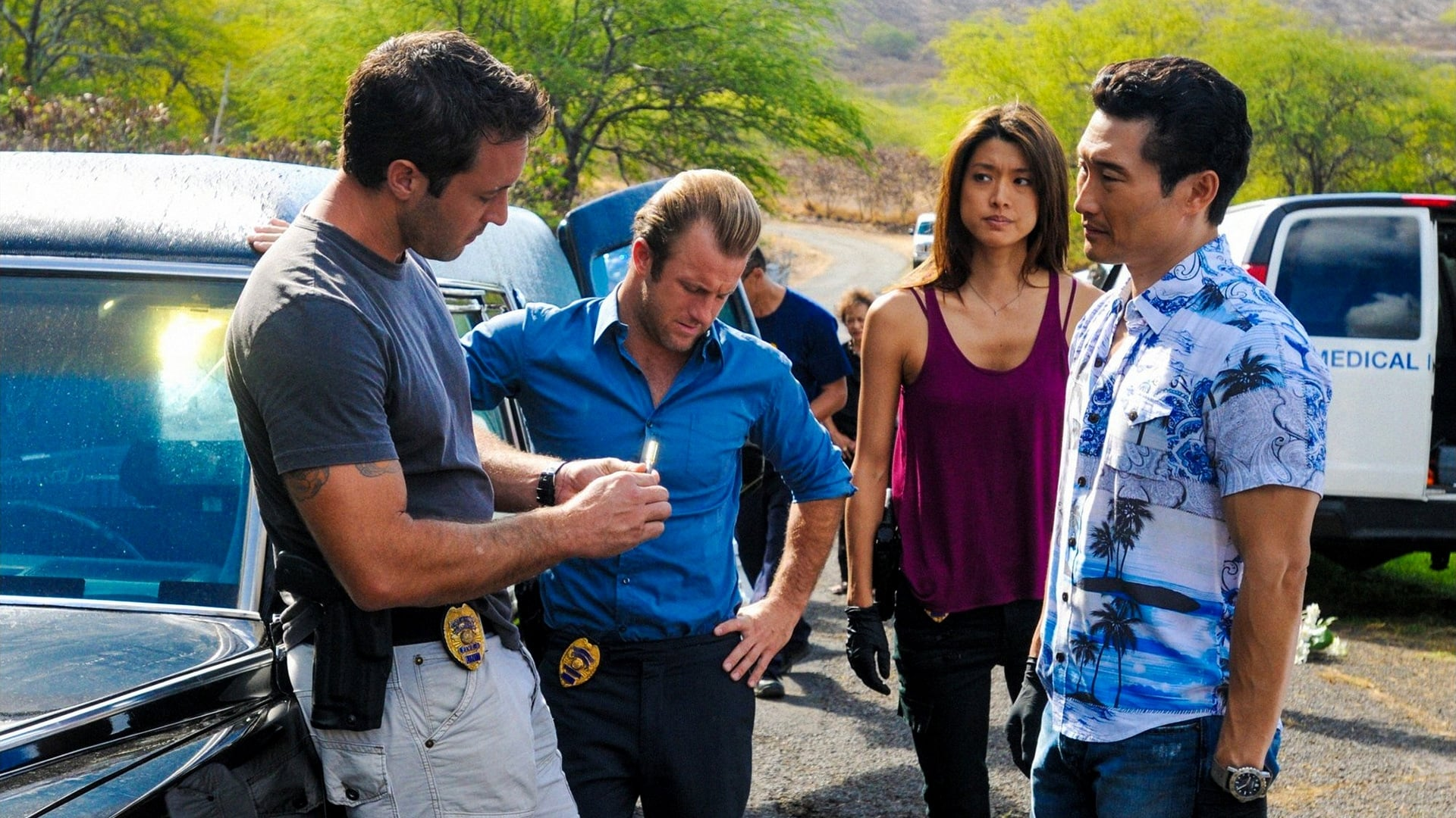Hawaii Five-0 Season 3 :Episode 15  Hookman