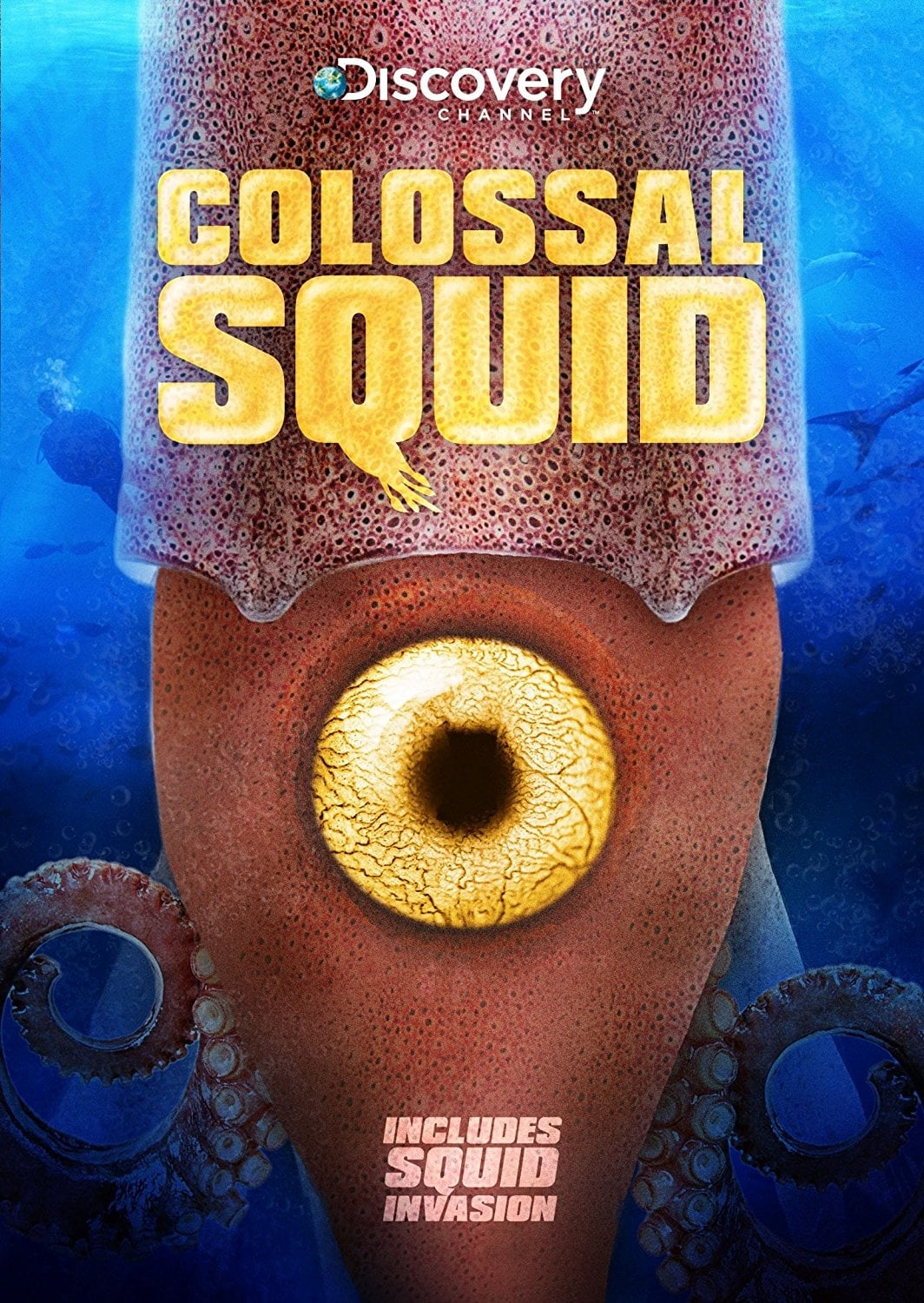 Colossal Squid (2008)