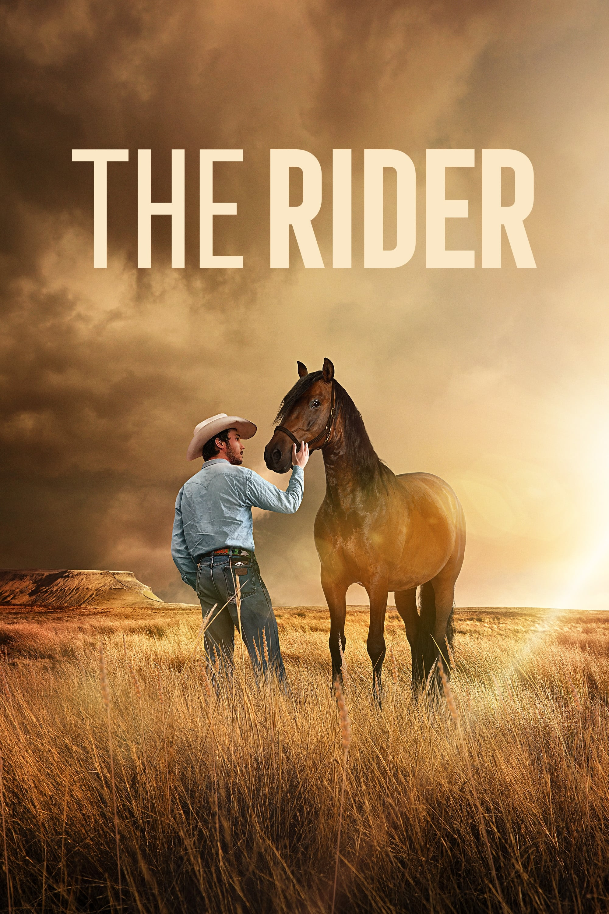 The Rider Película Completa HD 1080p [MEGA] [LATINO] 2017