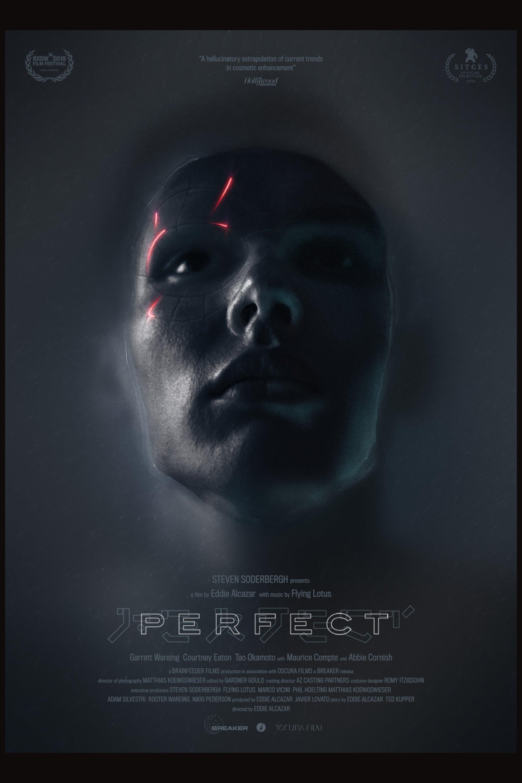 assistir filme perfect