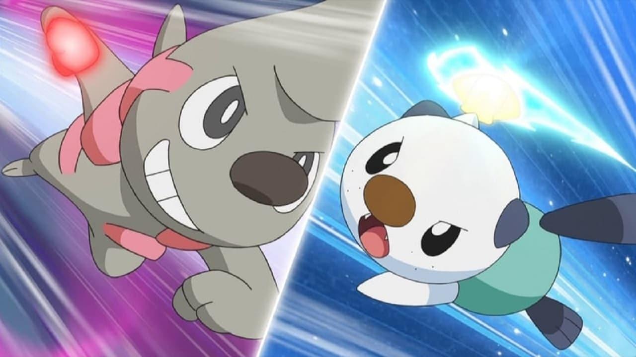 Ash and Trip's Third Battle!