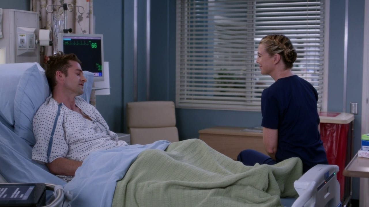 Grey's Anatomy Season 14 :Episode 17  One Day Like This