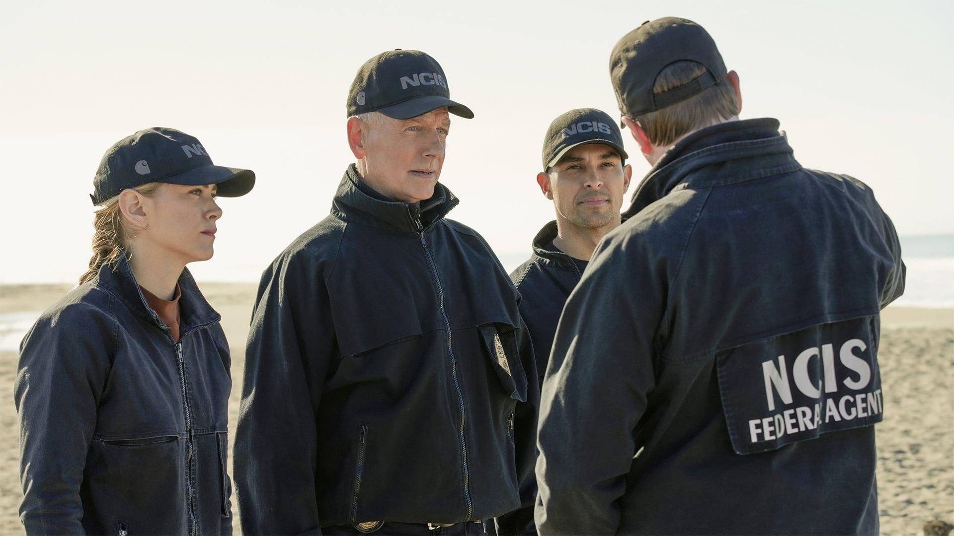 NCIS Season 17 :Episode 12  Flight Plan