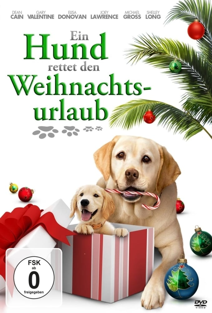 Ein Hund rettet den Weihnachtsurlaub on FREECABLE TV