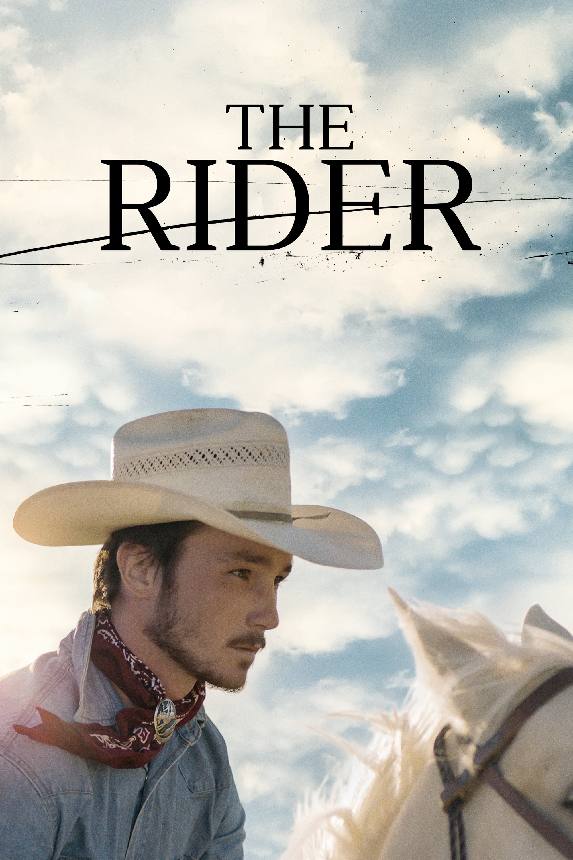 Image result for the rider poster