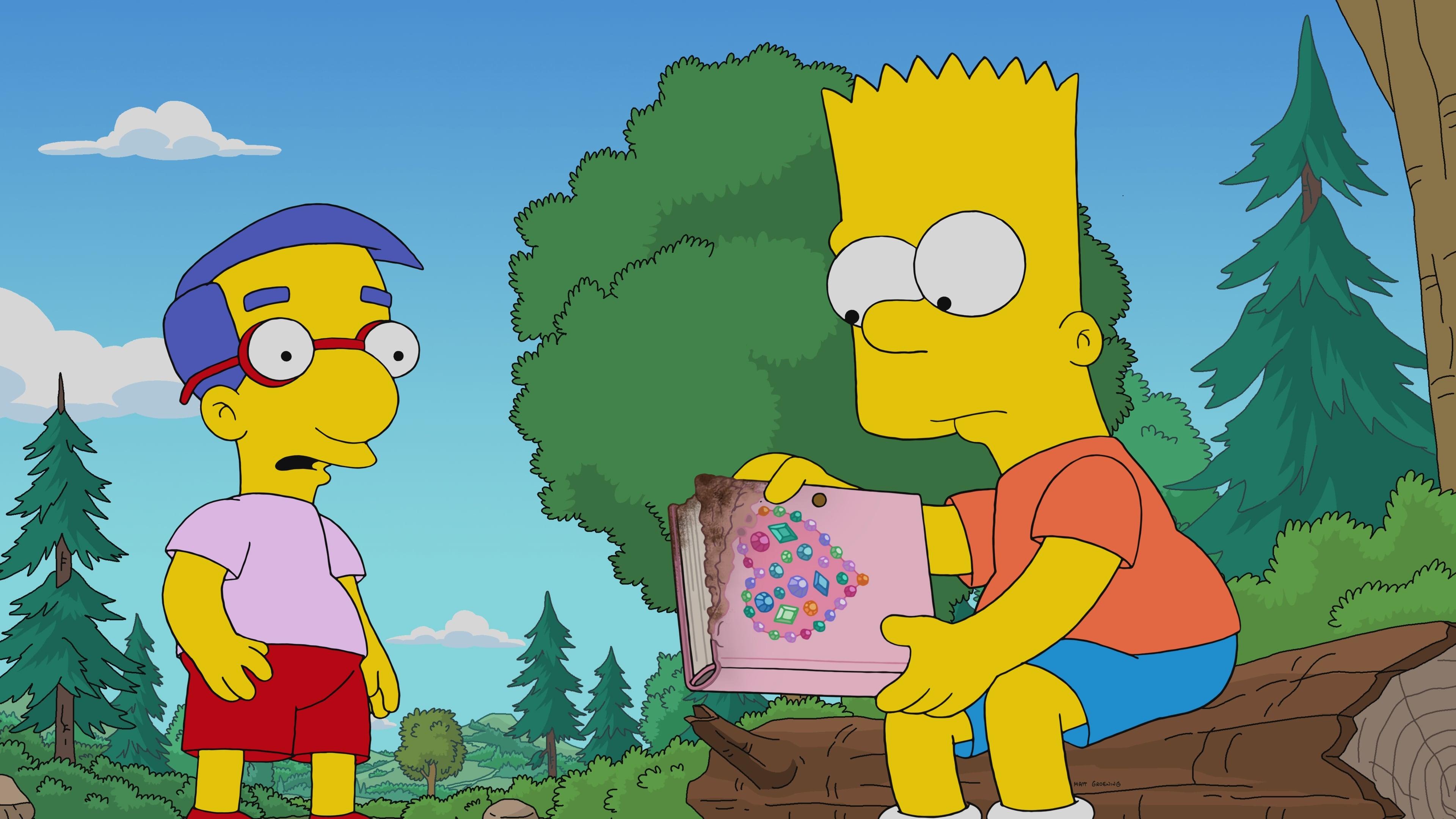The Simpsons Season 32 :Episode 12  Diary Queen
