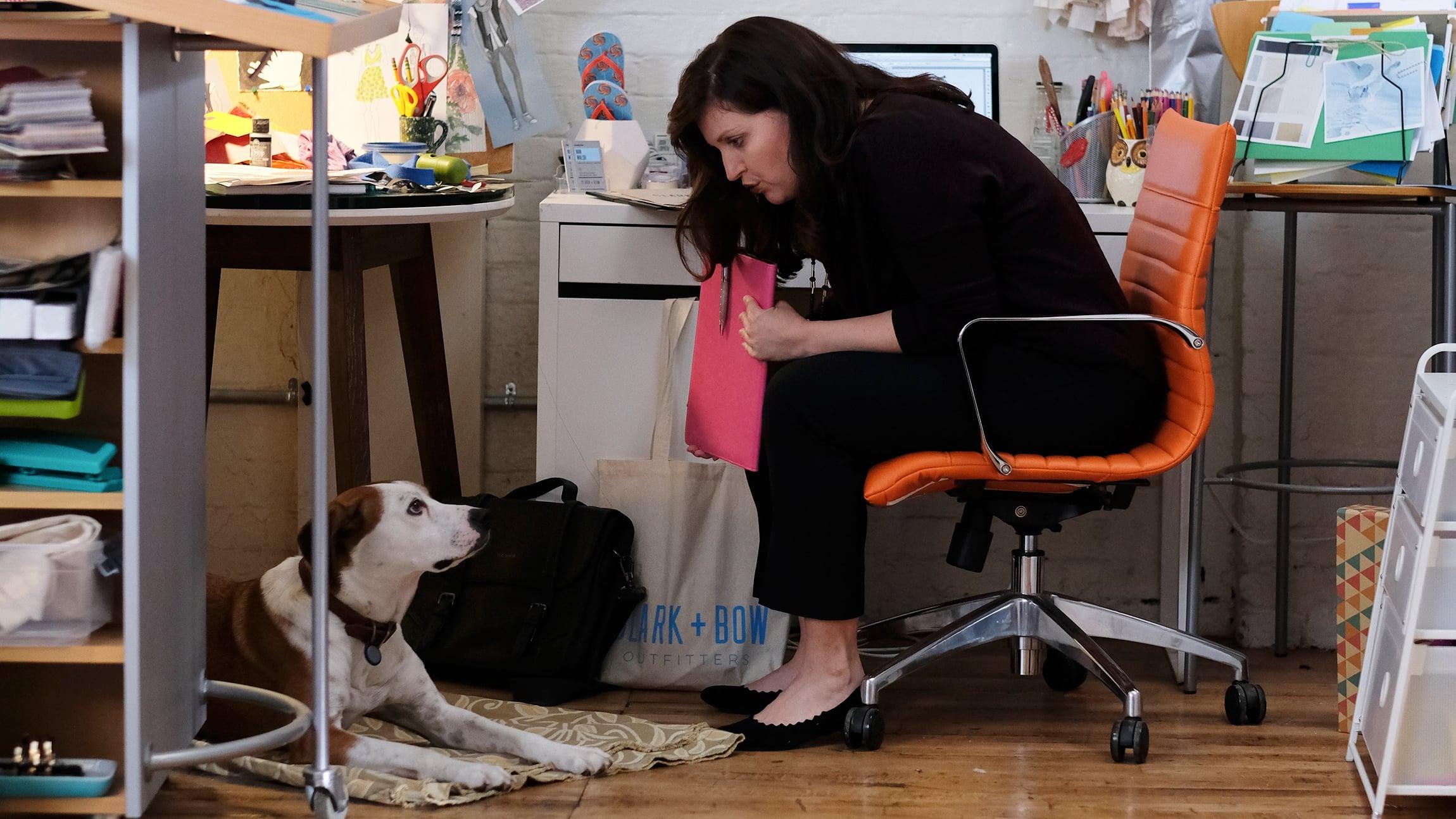 Watch Downward Dog Season  Episode  Online Free