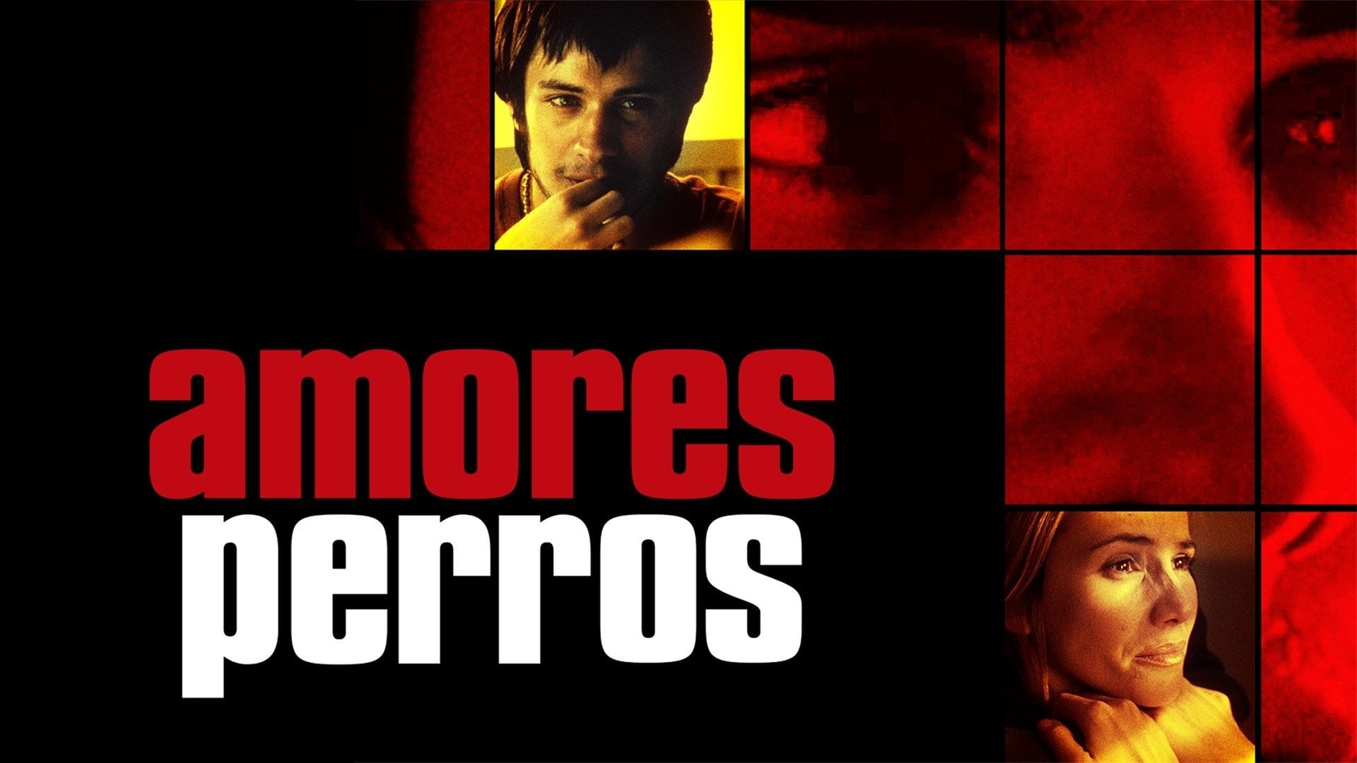 Ver Amores Perros 2000 Online Gratis Hd Castellano Espanol Latino Vose Pelisyseries Net