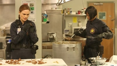 Bones Season 9 :Episode 10  The Mystery in the Meat