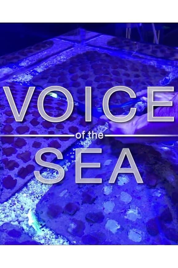 Voice of the Sea TV Shows About Hawaii