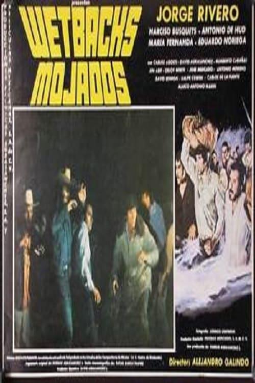 Ver Mojados Online HD Español (1979)