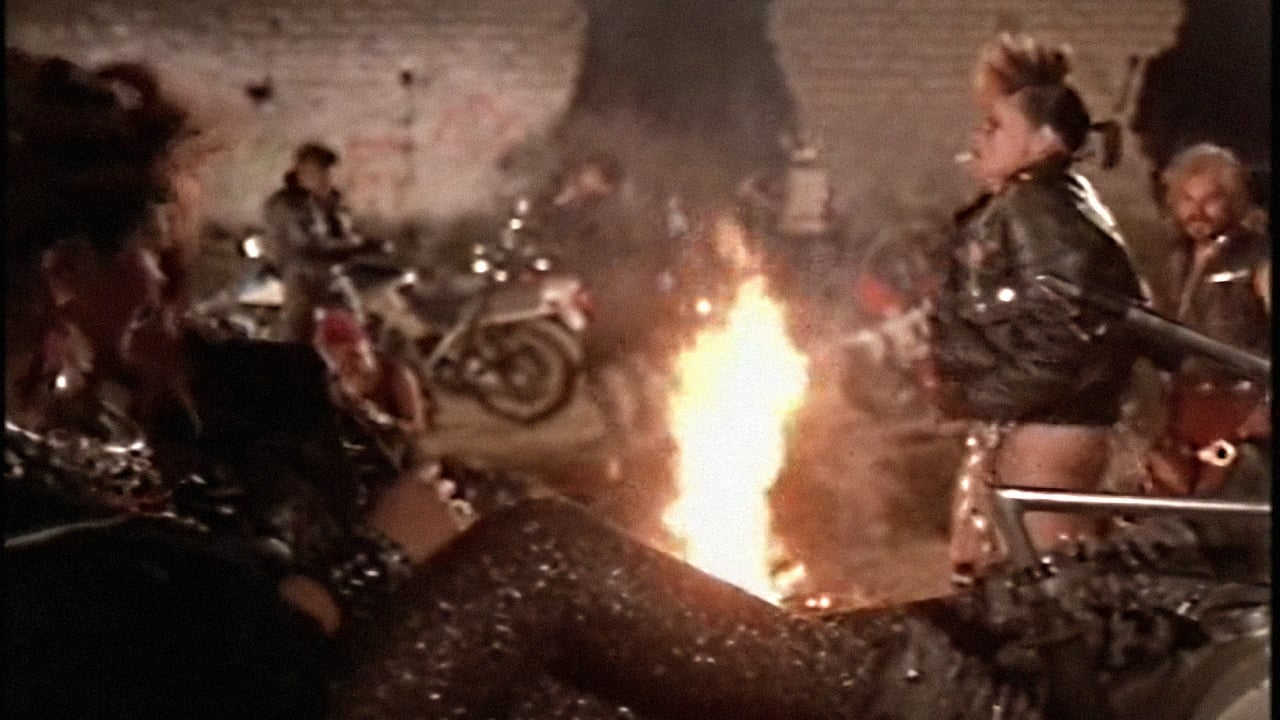 La venganza de los punks (1991)