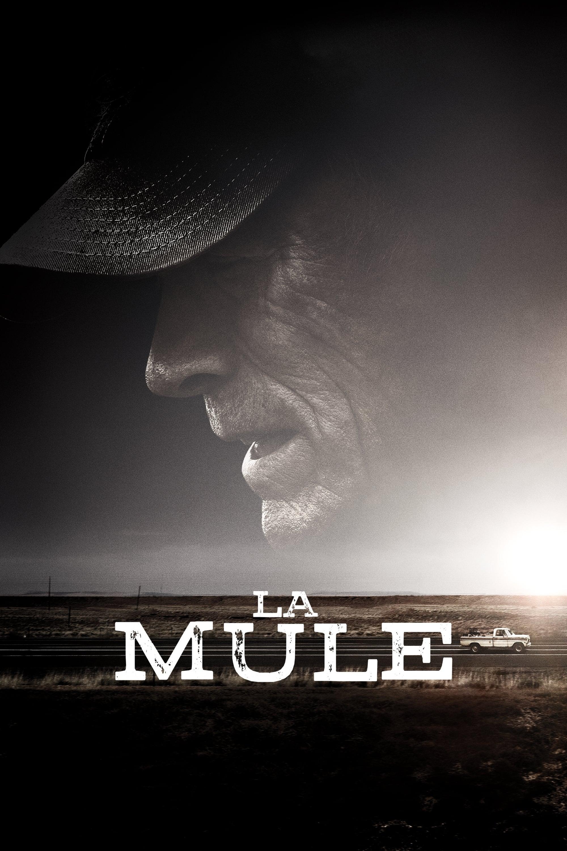 voir film La Mule streaming