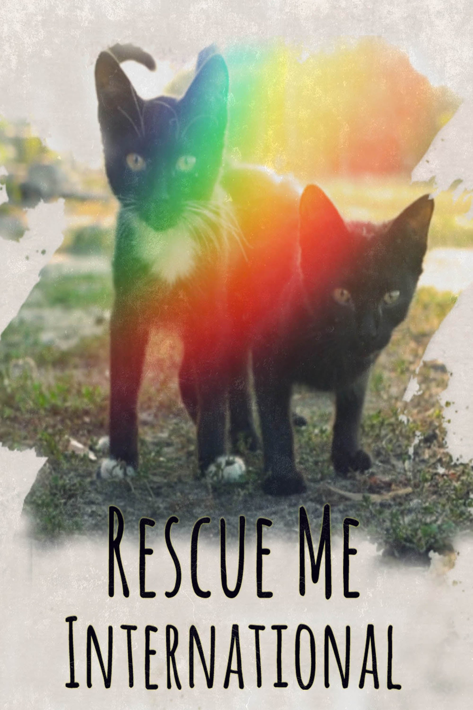 Rescue Me: International on FREECABLE TV