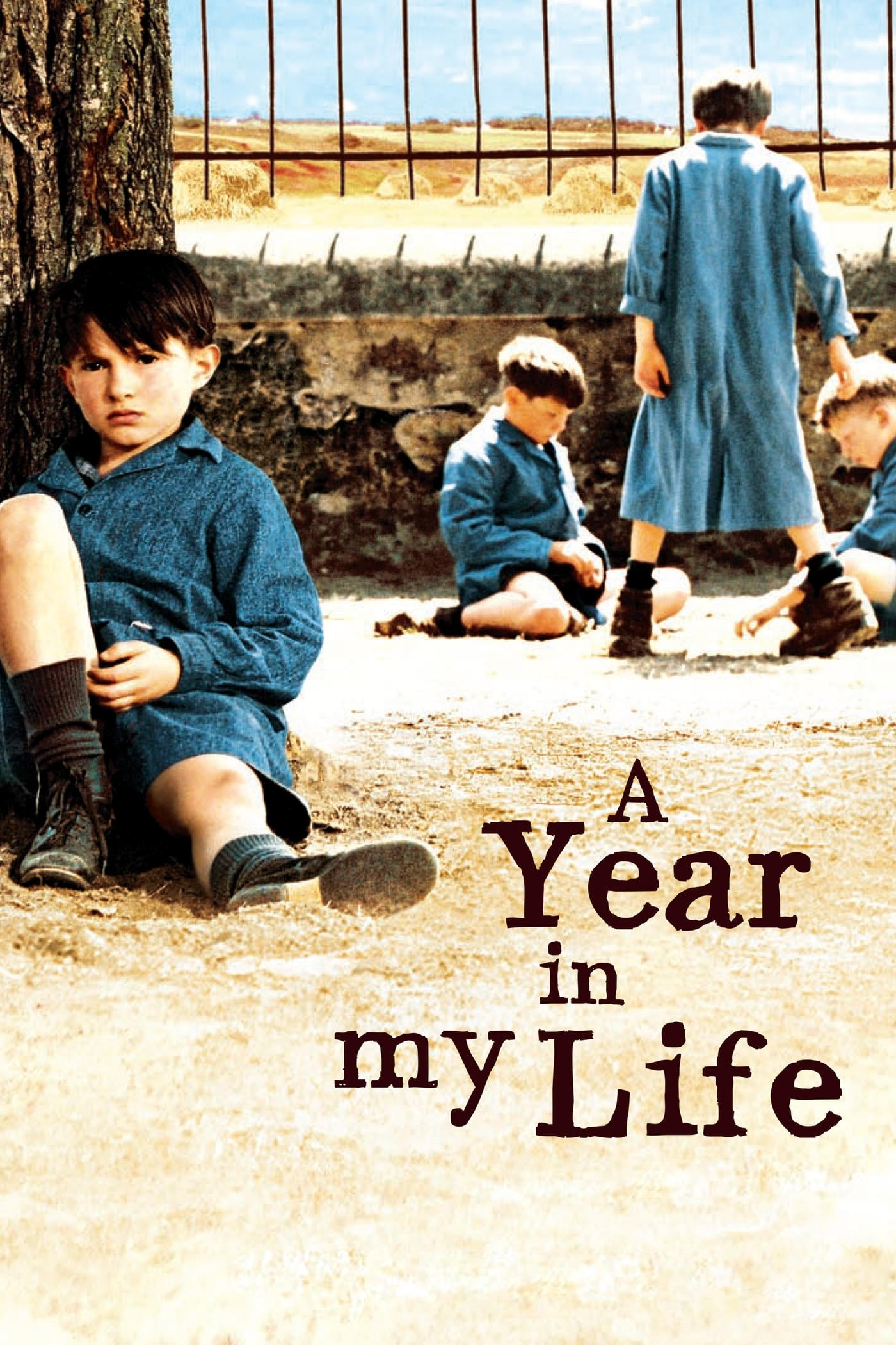 A Year in My Life (2006)