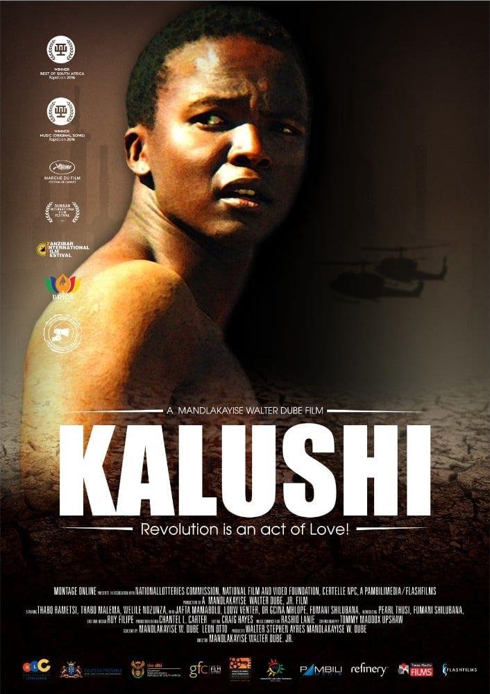 Ver Kalushi Online HD Español (2014)