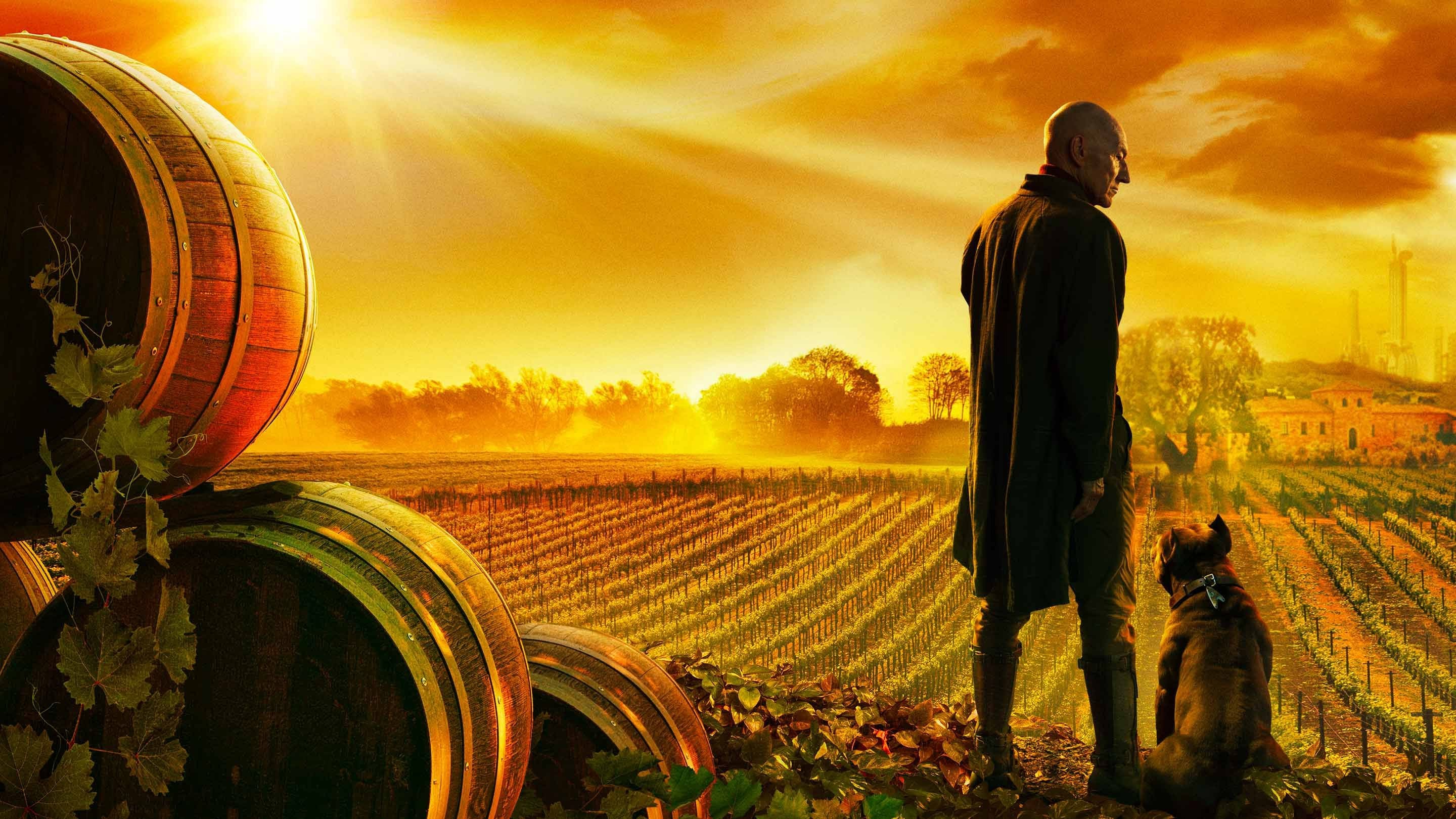 "1. Staffel ""STAR TREK: PICARD"" bei Amazon"