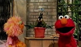 Sesame Street Season 40 :Episode 8  Stinky's Annual Birthday Flower