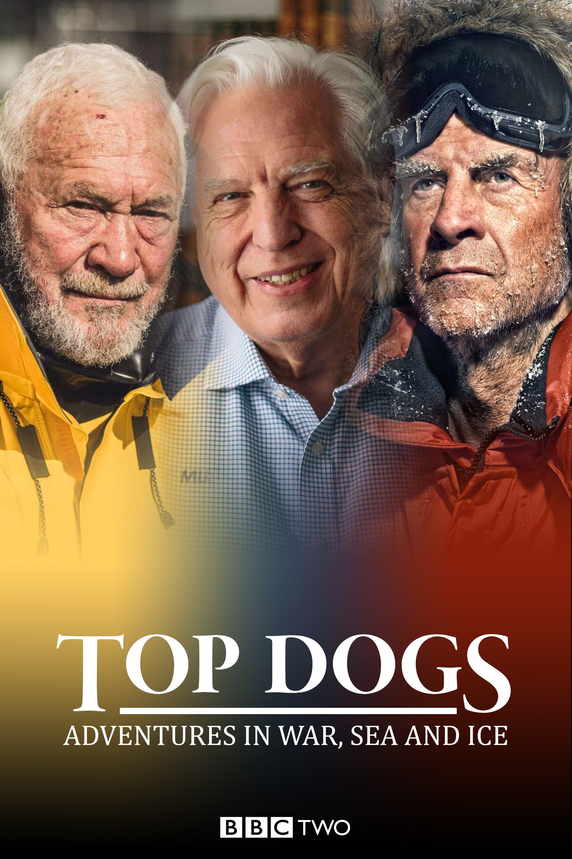 Top Dogs: Adventures in War, Sea and Ice TV Shows About Ocean