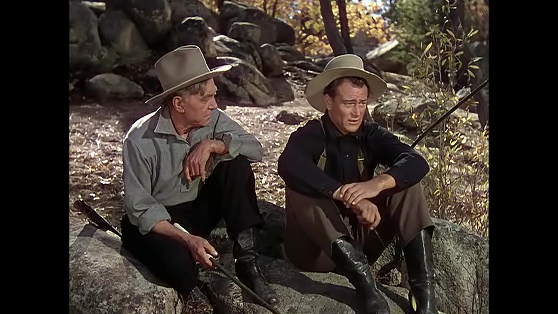 the shepherd of the hills 1941 the movie