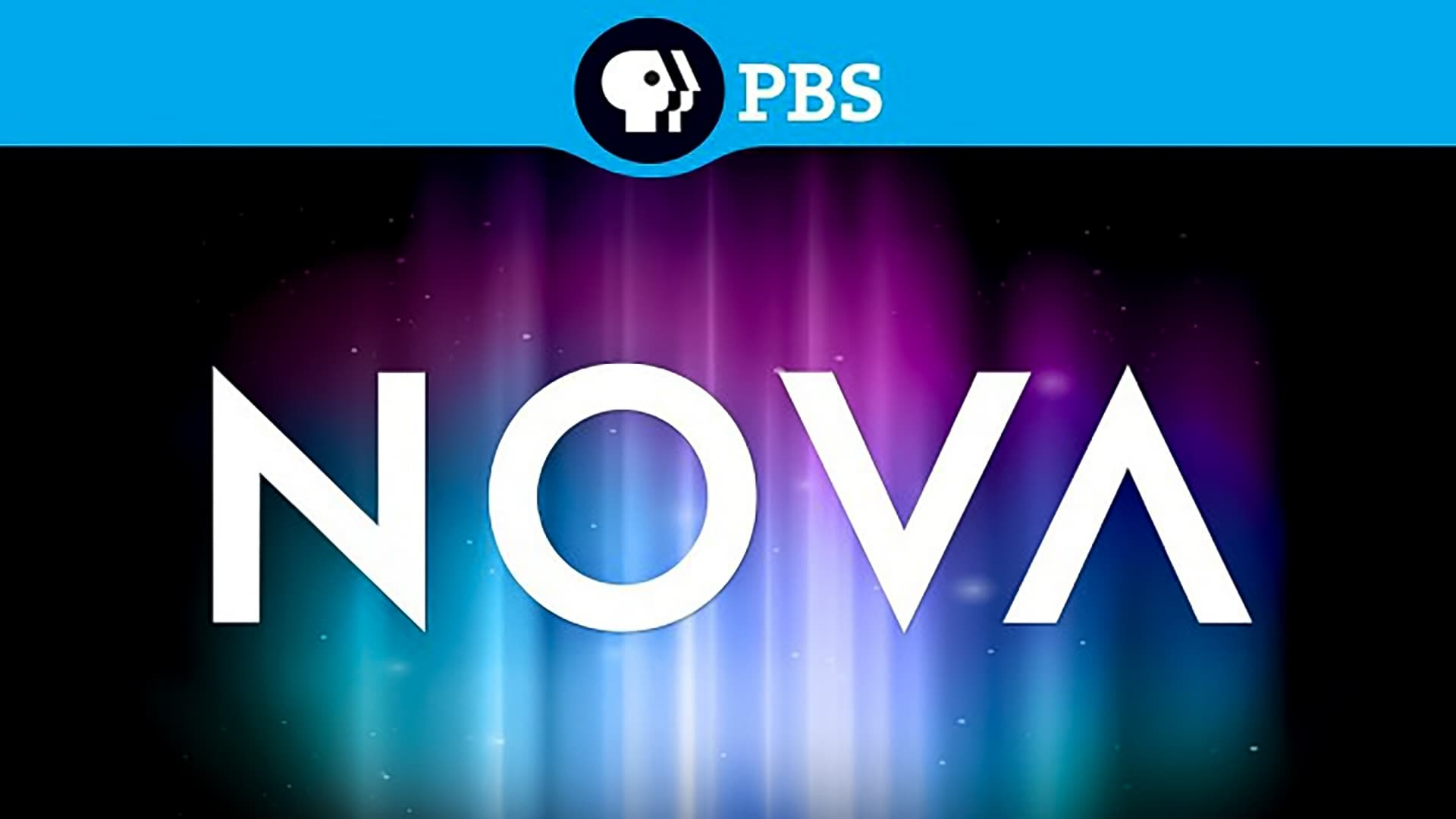 NOVA - Season 22 Episode 3 : Little Creatures Who Run the World
