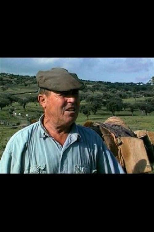 O Guardador de Rebanhos (1999)